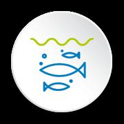 Visite de pisciculture